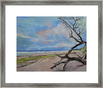 Driftwood Framed Print by Michael Creese