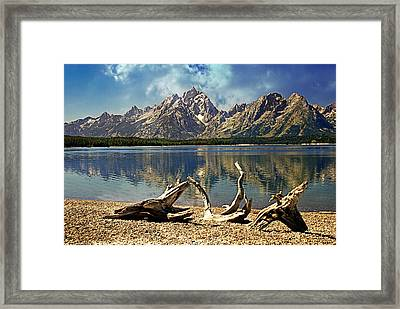 Driftwood Mountain Framed Print by Marty Koch