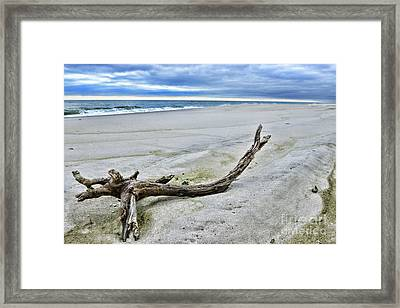 Framed Print featuring the photograph Driftwood On The Beach by Paul Ward