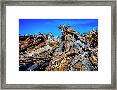 Driftwood Pile Up Framed Print by Garry Gay