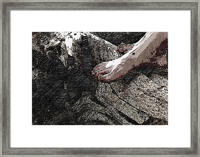 Driftwood Rest Framed Print by Wild Thing