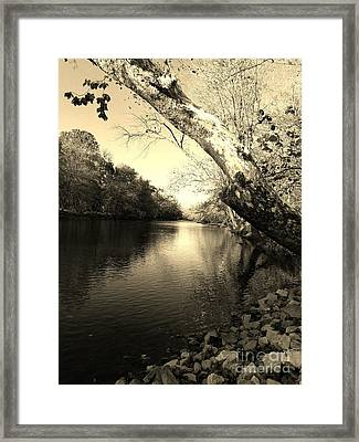 Driftwood River Southern Indiana -sepia Framed Print