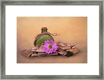Driftwood With Daisy Framed Print by Tom Mc Nemar