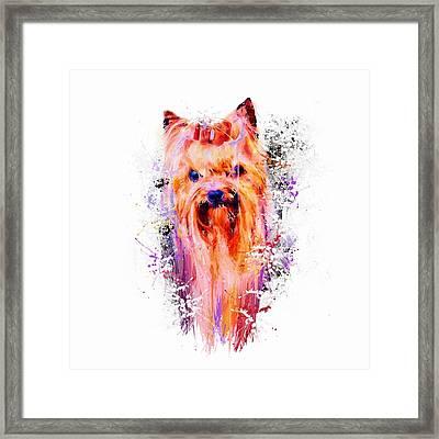 Drippy Jazzy Yorkshire Terrier Colorful Dog Art By Jai Johnson Framed Print