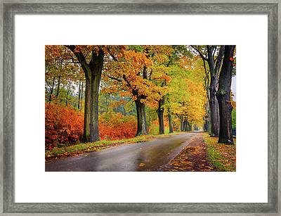 Framed Print featuring the photograph Driving On The Autumn Roads by Dmytro Korol
