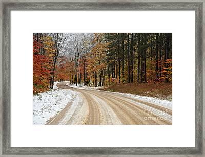 Driving Skills Framed Print by Terri Gostola