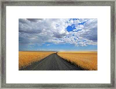 Driving Through The Wheat Fields Framed Print by Lynn Hopwood