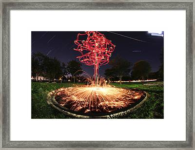 Drone Tree 1 Framed Print by Andrew Nourse