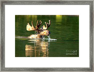 Drooling In The Deep Framed Print
