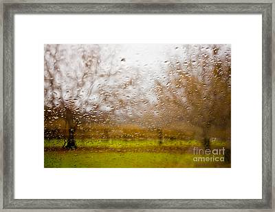 Droplets I Framed Print by Derek Selander
