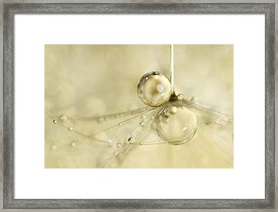 Droplets In Gold Framed Print
