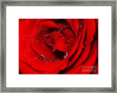 Droplets On Red Rose By Kaye Menner Framed Print