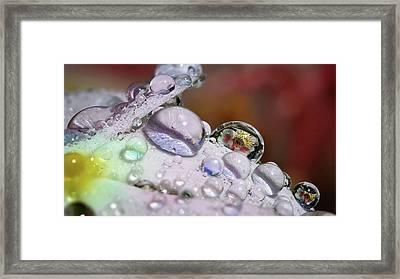 Drops Of Light Framed Print