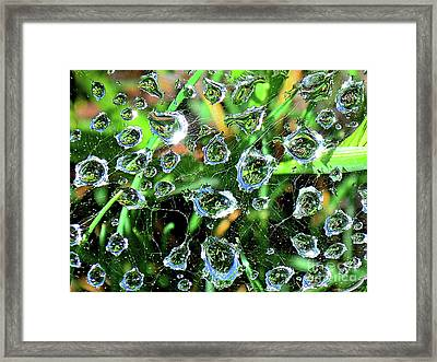 Drops Of Reflection Framed Print