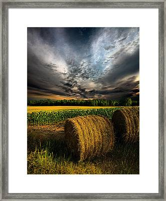 Drought Framed Print by Phil Koch
