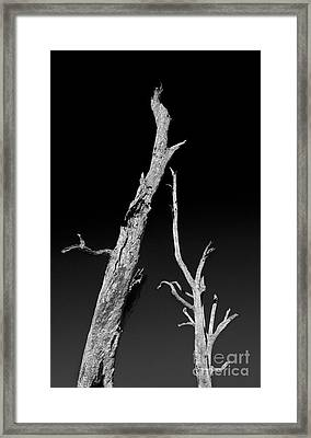 Drought Framed Print by Russ Brown