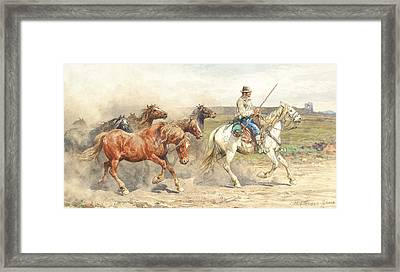 Droving Horses In The Roman Campagna Framed Print by Enrico Coleman
