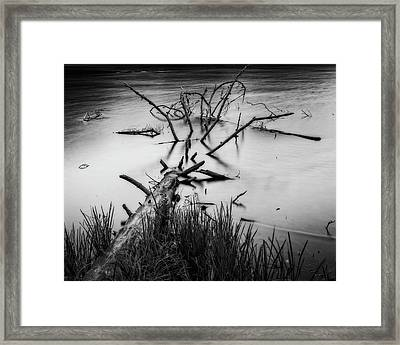 Framed Print featuring the photograph Drowning by Alan Raasch
