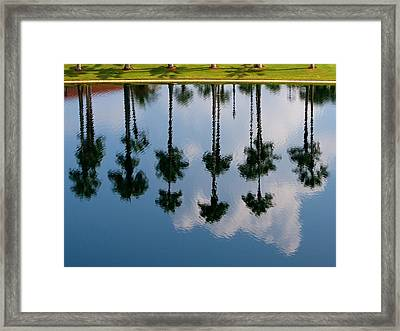 Framed Print featuring the photograph Drowning Palms by Ron Dubin