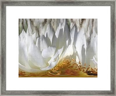 Drowning Petals Framed Print by Lisa S Baker