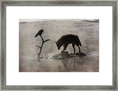 Druid Wolf And Raven Silhouette Framed Print