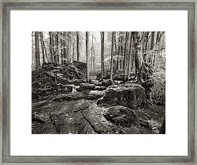 Druidenhain Framed Print by James Clancy
