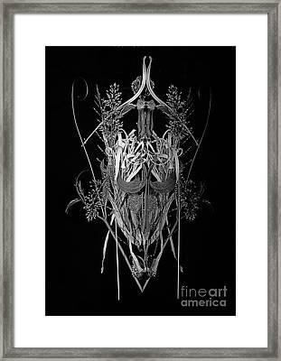 Dry Art -  2 Framed Print