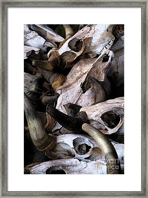 Dry As Bones Framed Print