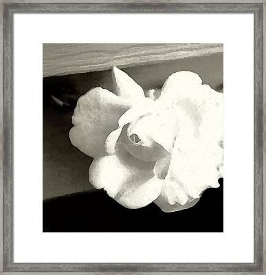 Dry Brushed Rose Framed Print by Emily Kelley
