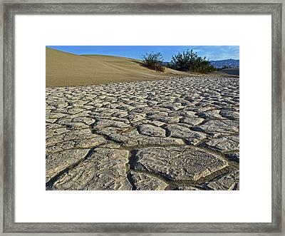 Dry Creek Bed Framed Print