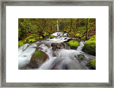 Dry Creek Falls In Spring Framed Print by David Gn