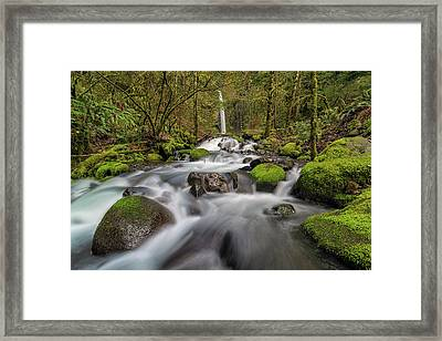 Dry Creek Falls In Springtime Framed Print by David Gn