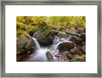 Dry Creek II Framed Print by David Gn
