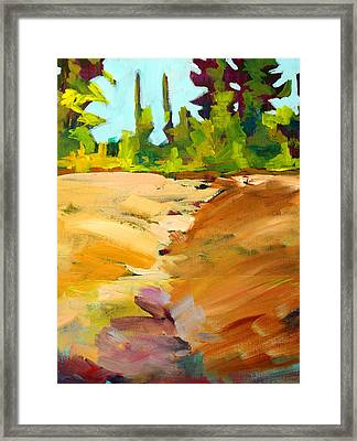 Dry Creek Framed Print by Nancy Merkle