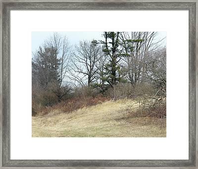 Dry Field Framed Print