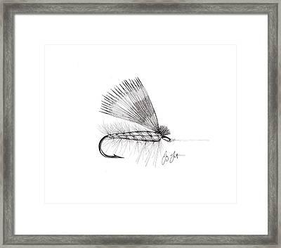 Dry Fly Framed Print by Jay Talbot