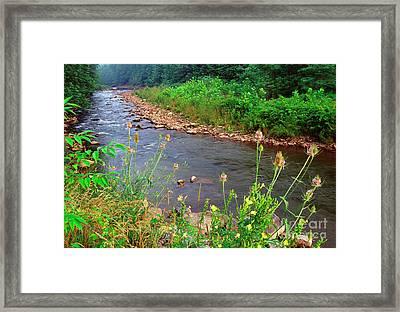 Dry Fork River Framed Print by Thomas R Fletcher