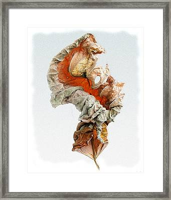 Framed Print featuring the photograph Dry Leaf by Vladimir Kholostykh