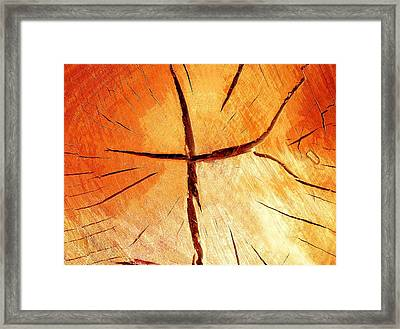 Dry Wood Is Necessary For The Fire To Ardently Burn. Framed Print