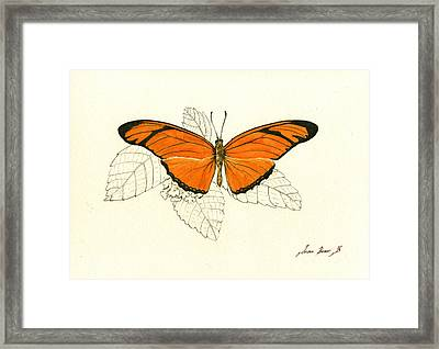 Dryas Iulia, Orange Julia Butterfly Framed Print