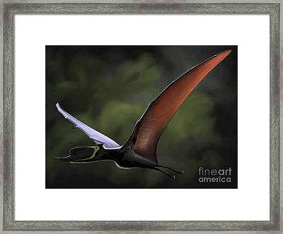 Dsungaripterus With Wings Spread Framed Print by Michele Dessi