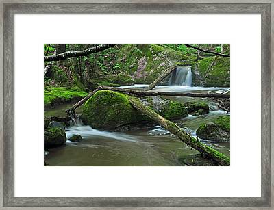 Dual Falls Framed Print by Glenn Gordon