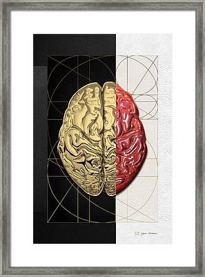 Dualities - Half-gold Human Brain On Black And White Canvas Framed Print