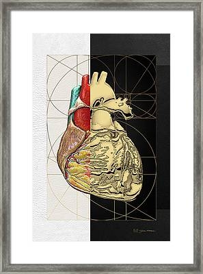 Dualities - Half-gold Human Heart On Black And White Canvas Framed Print