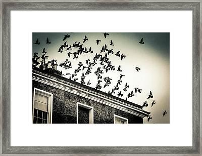 Flight Over Oscar Wilde's Hood, Dublin Framed Print