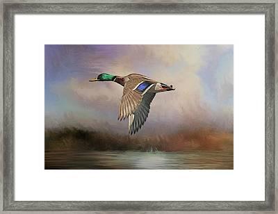 Duck Dynasty Framed Print