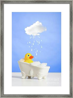 Duck Having A Bath Framed Print