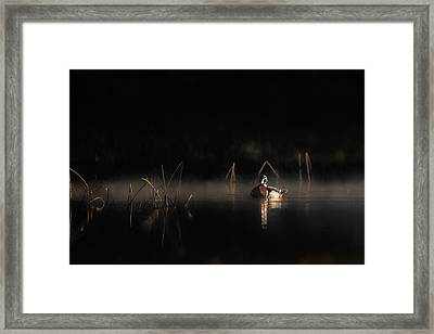 Framed Print featuring the photograph Duck Of The Morning Mist by Bill Wakeley