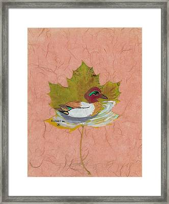 Duck On Pond Framed Print