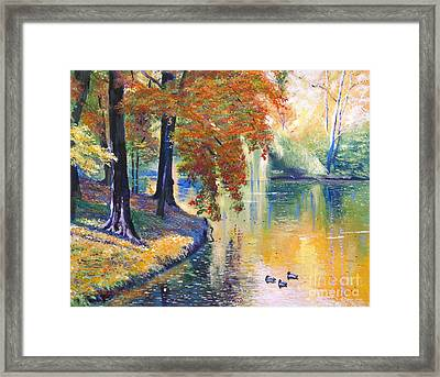 Duck Pond Framed Print by David Lloyd Glover